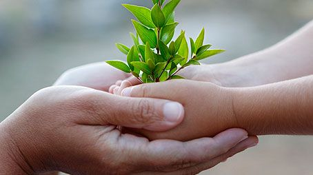 sustainable_hands